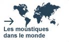 Les moustiques dans le monde