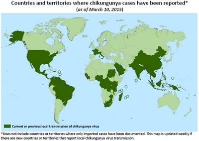 http://vigilance-moustiques.com/wp-content/uploads/2013/04/Chikungunya-CDC.jpg