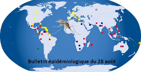 Lgende De La Carte Rouge Dengue Jaune Chikungunya Bleu Paludisme Vert Zika Violet Virus Ross River Et Barmah Forest