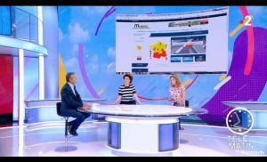 Télématin - France 2 - Vigilance Moustiques